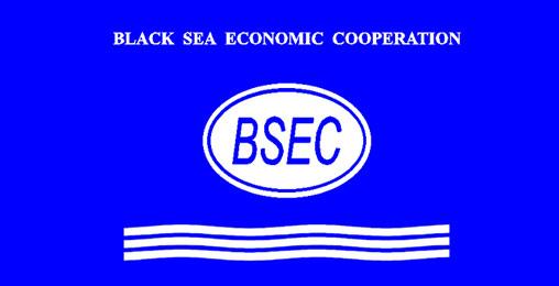 მაია ფანჯიკიძე  BSEC-ის  წარმომადგენლებს შეხვდა
