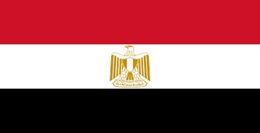 ეგვიპტეში საკონსტიტუციო რეფერენდუმის შედეგების დათვლა დაიწყო