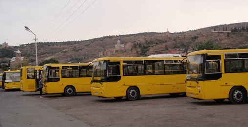 ყვითელი ავტობუსები და სამარშრუტო ტაქსების  მძღოლები დღეს 1 წუთით შეჩერდებიან