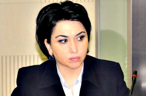 ეკა ბესელია: ვცდილობდით ჩვენი მასალების ჰააგის საერთაშორისო სასამართლოში ჩატანას