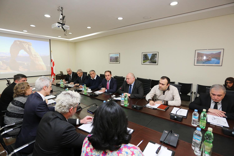 ინტერმუნიციპალური თანამშრომლობის საკითხთან დაკავშირებით, ევროპის საბჭოს წარმომადგენლებთან შეხვედრა გაიმართა